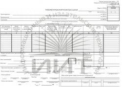 Бланк ТТН (товарно-транспортная накладная)