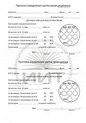 Протокол определения группы крови, медицинский бланк
